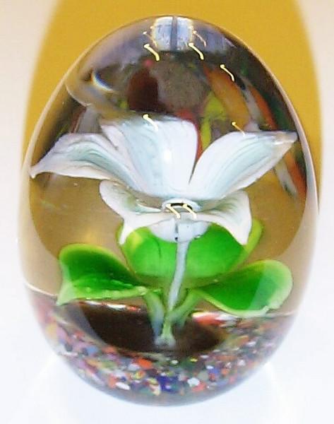 DCP04930Exp P6 Flower White-1